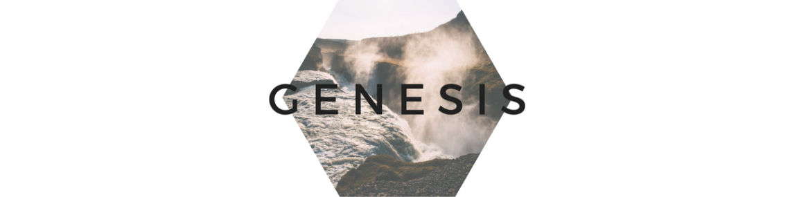 genesis-316