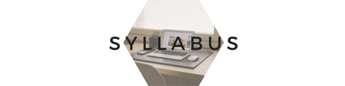 syllabus-316